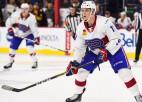 Jevpalovs un Ābols rezultatīvi asistē komandu uzvarās AHL, Ansonam 24. punkts