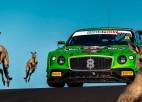 Video: Ķenguri ierodas uz auto sacīkstēm un joņo pa trasi