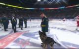 Video: Simbolisko iemetienu pirms SKA spēles veic suns