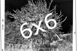 """Liepājas muzejā atklās Gunāra Kopštāla  personālizstādi """"6x6"""""""