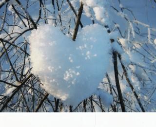 Foto: Dabas veidotas sirdis- skaisti un neparasti!