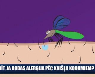 Video: Ko darīt, ja rodas alerģija pēc kukaiņu kodumiem?