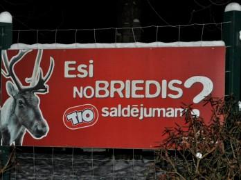 Foto: Nakts Zoodārzs