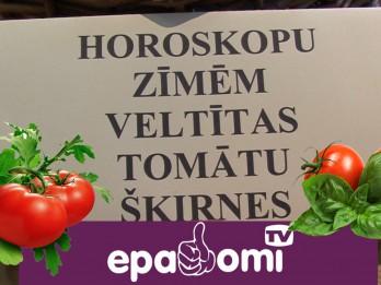 Video: Astroloģiskie tomāti katrai zodiaka zīmei. Ražots Latvijā