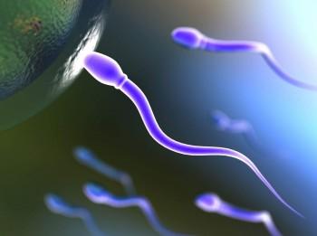 12 neparasti mīti par spermu. Uzzini, kas ir patiesība un kas- izdoma