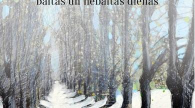 """Apgāds """"Mansards"""" izdod Kārļa Ķezbera grāmatu """"Ar domu par Latviju. Baltās un nebaltās dienās"""""""