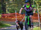 Mūsējiem vairākas uzvaras Pasaules kausa posmā kamanu suņu sportā Carnikavā