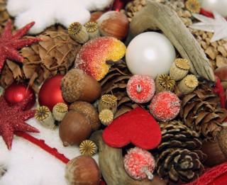 """Izstāde """"Pušķojam Ziemassvētkus"""" Latvijas Universitātes Botāniskajā dārzā"""