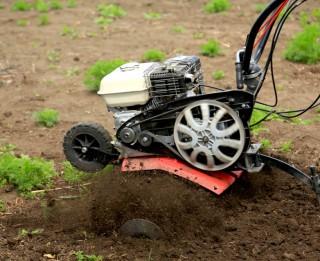 Noderīgi instrumenti pavasara darbiem – kultivators un zemes urbis